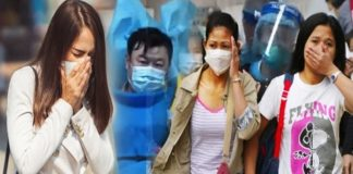Search Results Web results Wuhan shrimp seller identified as corona virus patient zero